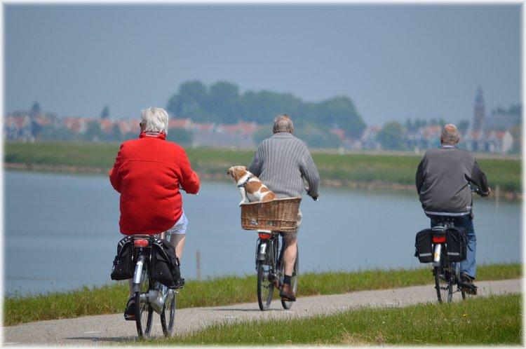 Balance and coordination seniors